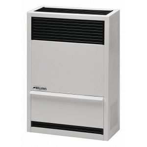 Williams - 14,000 BTU Direct-Vent Furnace LP Gas with Wall or Cabinet-Mounted Thermostat
